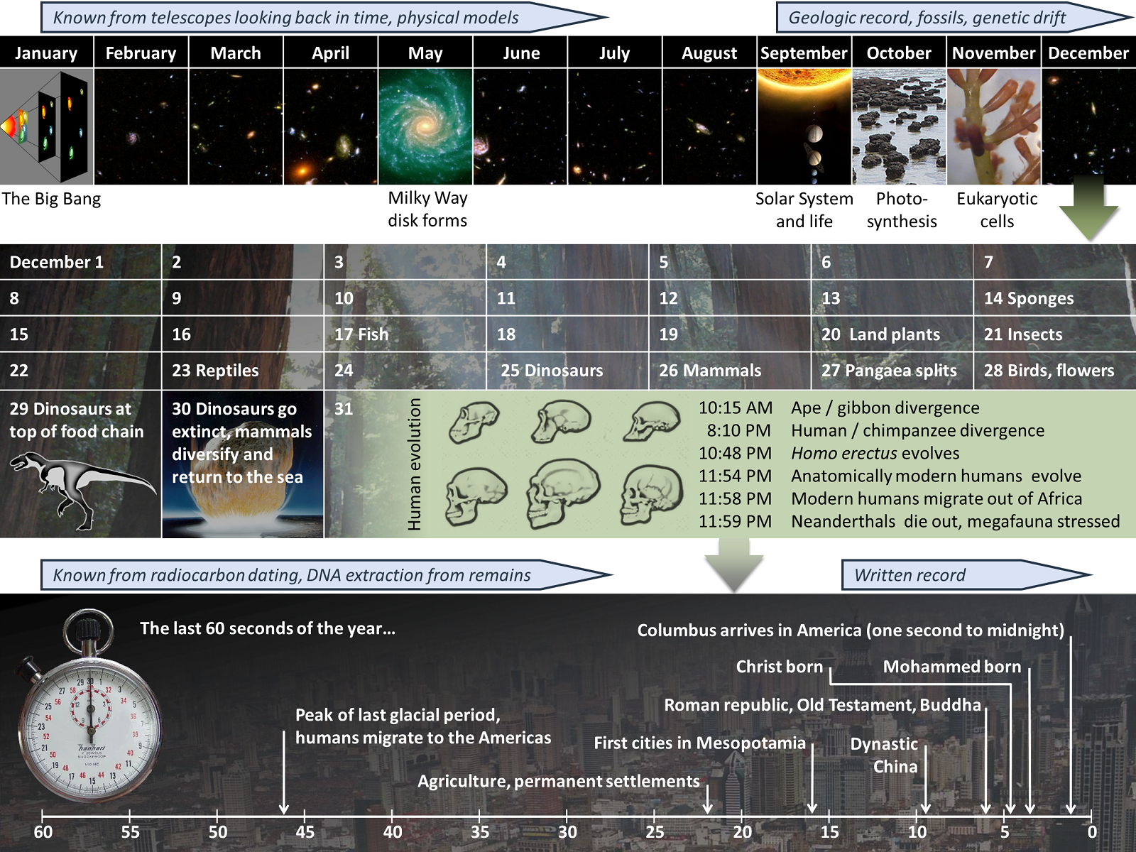 The cosmic calendar: time from the big bang to present day, represented on a twelve month calendar.