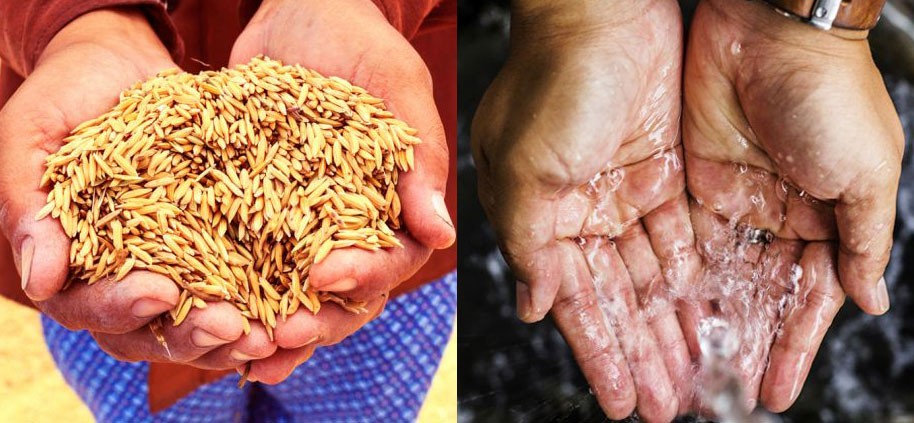 Photos of hands holding grain and hands under running water.