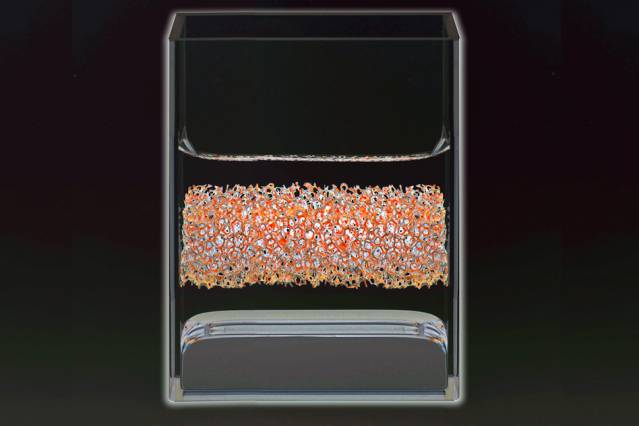 Image showing three vertical layers of material in a glass container.