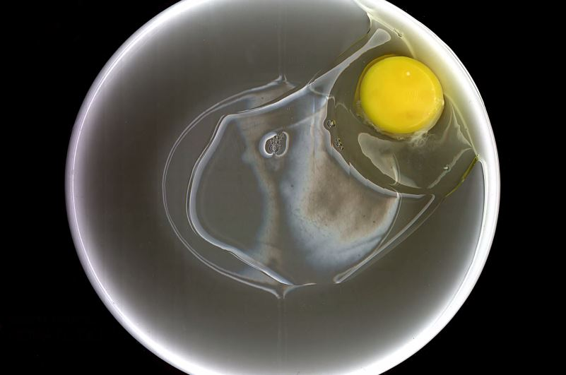 Photo of a raw chicken egg on a black background.