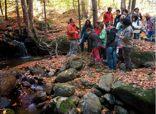 Photo of students and teacher in the woods, in discussion near a stream.
