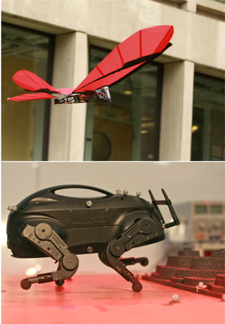 Photos of a flying winged robot and a four-legged robot.