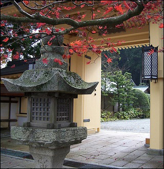 Photo of a Japanese temple gate with red-leaved maple tree out front.
